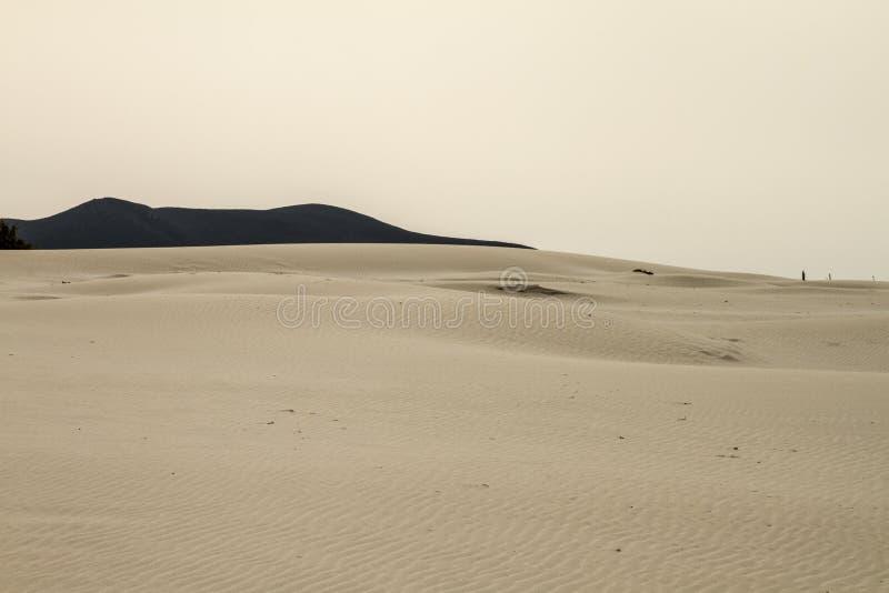 Zandduinen die vormt een maanlandschap met grijze overzees en loden de winterhemel geschetst zijn stock foto