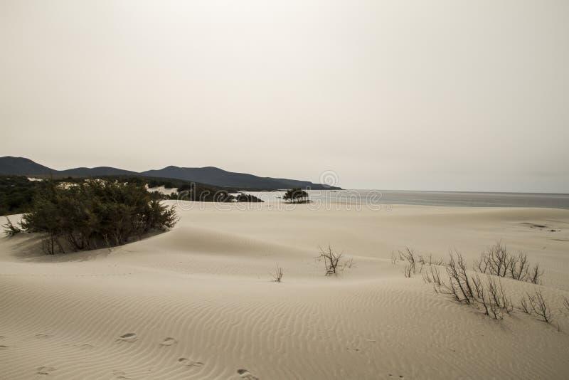 Zandduinen die vormt een maanlandschap met grijze overzees en loden de winterhemel geschetst zijn royalty-vrije stock afbeelding