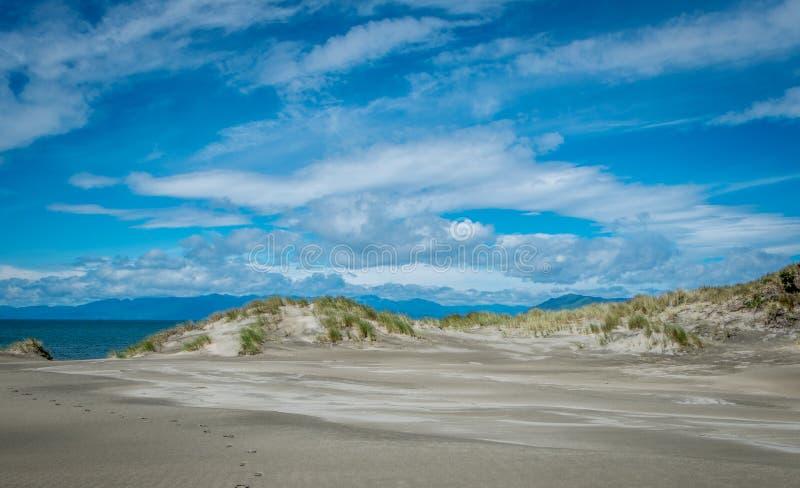 Zandduinen door groene gras en oceaan, Nelson Area, Nieuw Zeeland worden behandeld dat royalty-vrije stock foto's