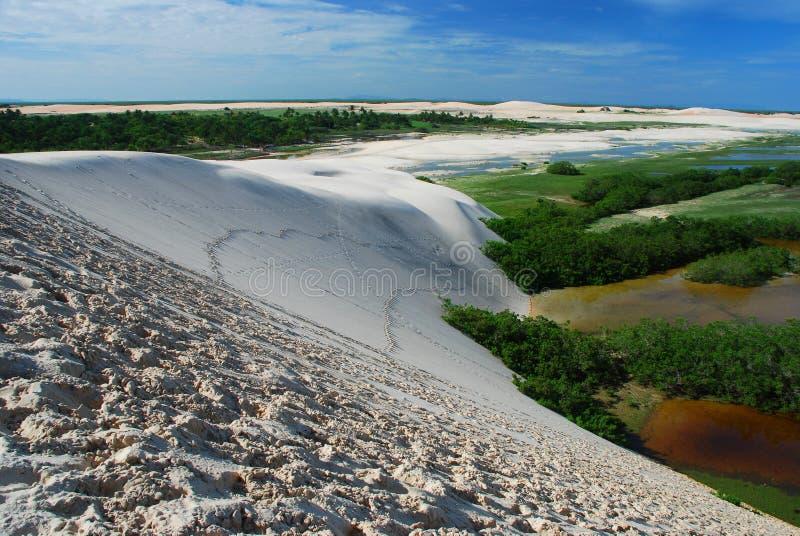 Zandduinen en lagunes Tatajuba Ceara, Brazilië stock afbeelding