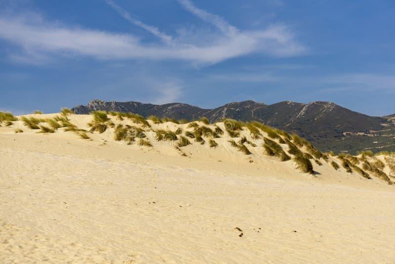 Zandduinen op het strand tegen de achtergrond van bergen teer stock foto