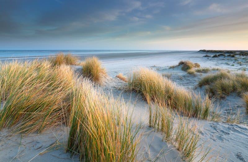 Zandduinen op het windmolenstrand in de Noordzee stock afbeelding