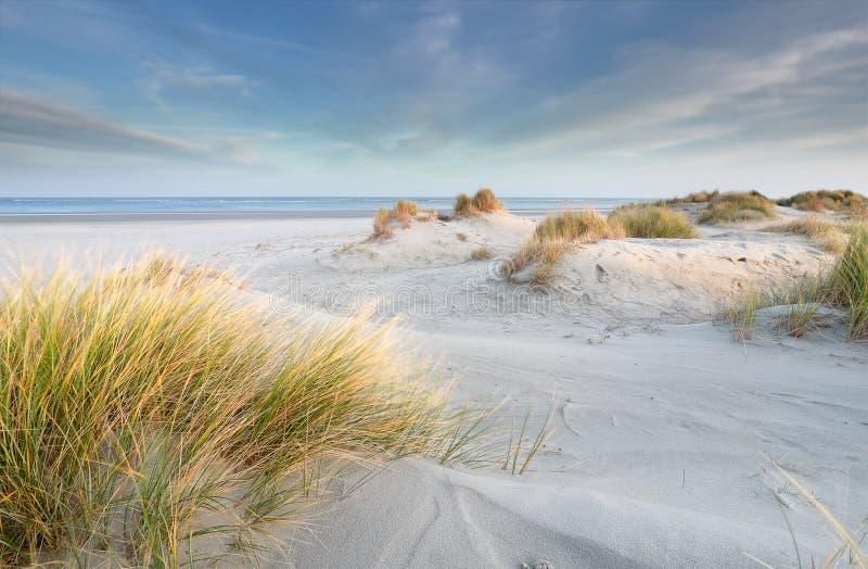 Zandduinen op Noordzeestrand royalty-vrije stock afbeeldingen