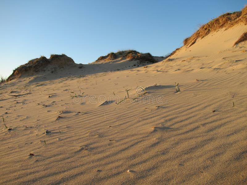 Zandduinen op Salento-strand royalty-vrije stock afbeelding