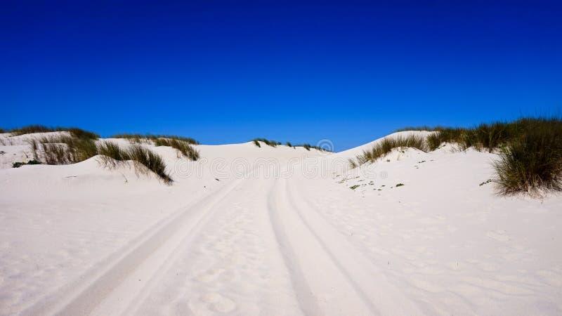 Zandduinen op strand in Portugal stock foto