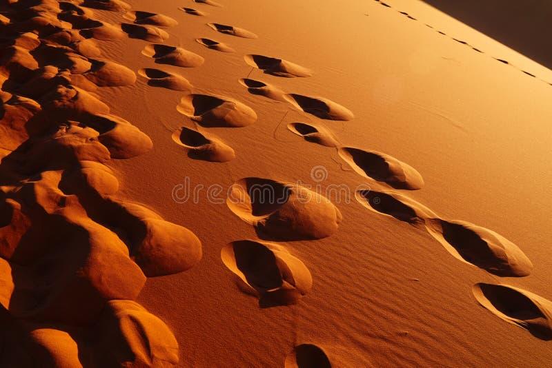 Zandduinen in Sahara Desert, Merzouga royalty-vrije stock afbeeldingen