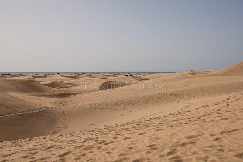 Zandduinen van Maspalomas, Canarische Eilanden, Spanje royalty-vrije stock foto's