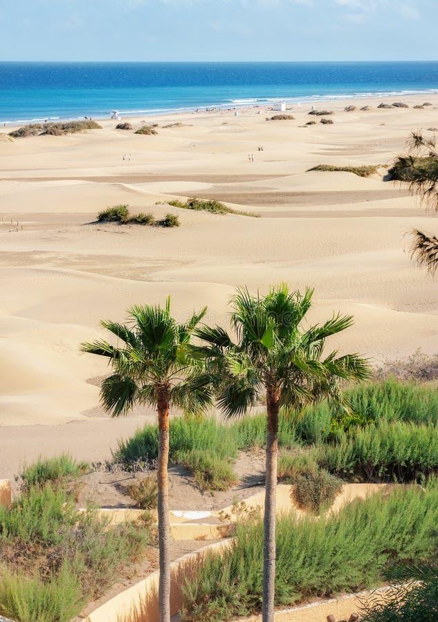 Zandduinen van maspalomas Gran Canaria Canarische Eilanden stock foto's