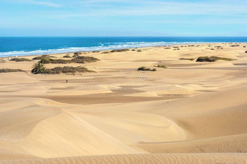 Zandduinen van maspalomas Gran Canaria Canarische Eilanden, Spanje stock foto