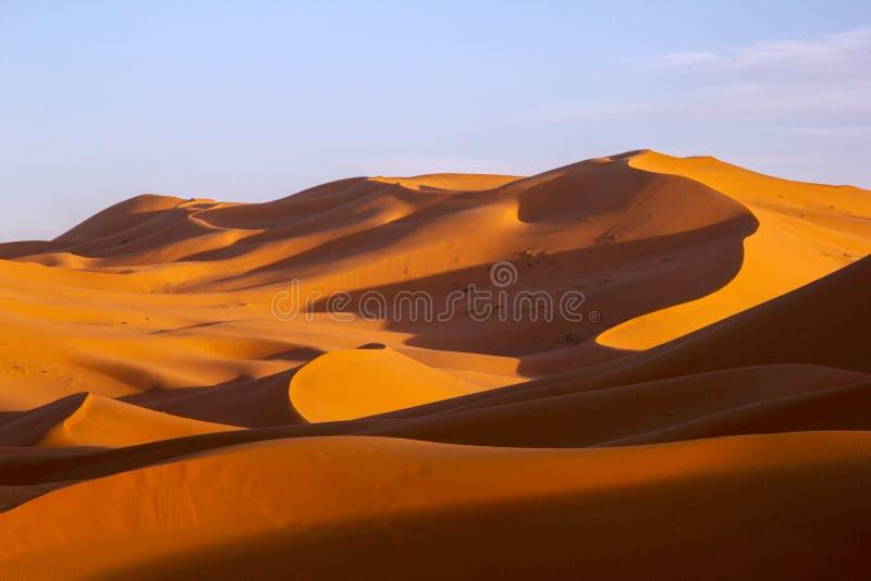 Zandduinen van Sahara Desert stock foto