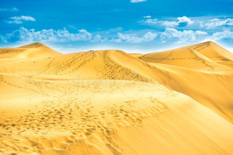 Zandig landschap van de Duinen van reservemaspalomas royalty-vrije stock fotografie