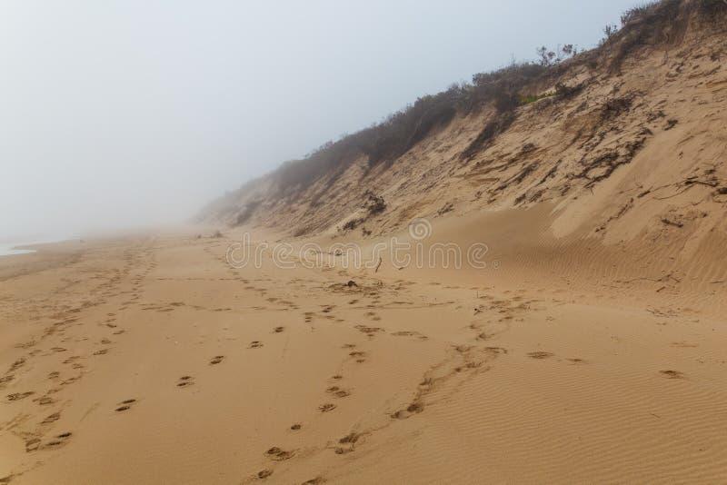 Zandig oceaanstrand in mist in Sedgefield, Zuid-Afrika royalty-vrije stock fotografie