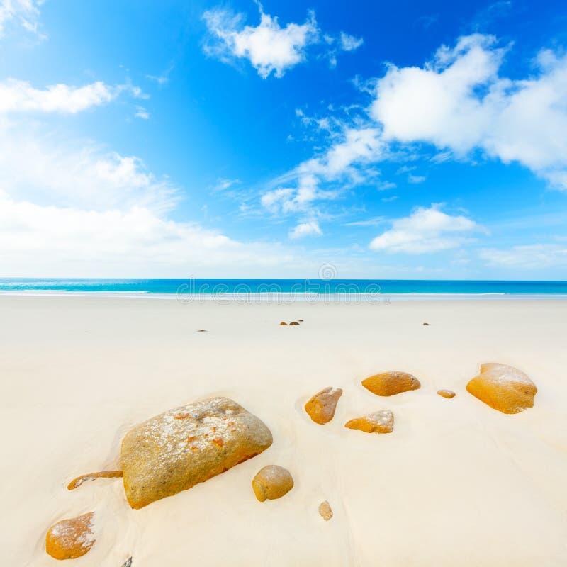 Zandig strand stock fotografie