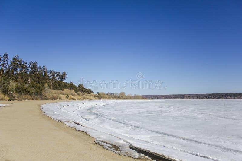 Zandig strand met groene en droge bomen op de achtergrond van een wit bevroren meer met ijs en sneeuw onder een duidelijke donker royalty-vrije stock foto's