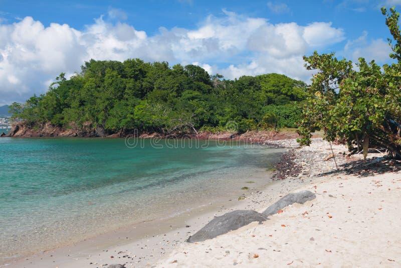 Zandig strand op tropisch eiland Pointe-du-periode, Martinique royalty-vrije stock fotografie