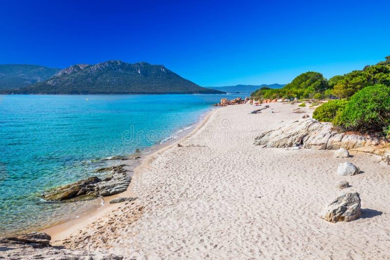 Zandig strand San Ciprianu in Corsica, Frankrijk, Europa royalty-vrije stock afbeeldingen