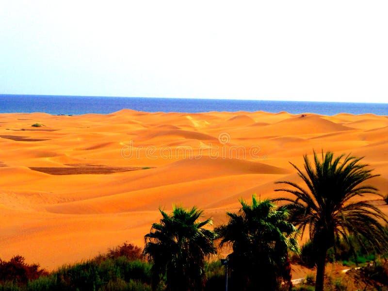Zandige duinen in beroemd natuurlijk Maspalomas-strand Gran Canaria spanje stock afbeelding