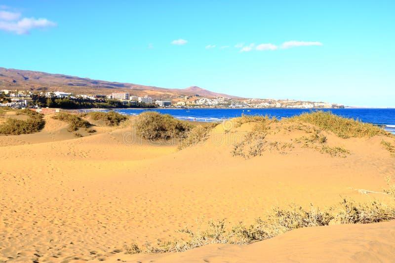 Zandige duinen in beroemd natuurlijk Maspalomas-strand Gran Canaria spanje royalty-vrije stock foto