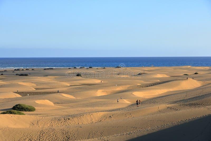 Zandige duinen in beroemd natuurlijk Maspalomas-strand Gran Canaria spanje royalty-vrije stock foto's