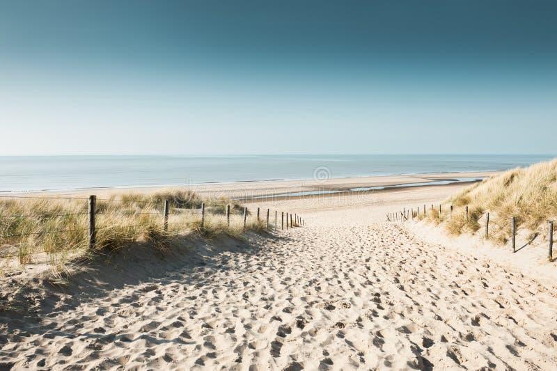 Zandige duinen op de kust van Noordzee royalty-vrije stock fotografie