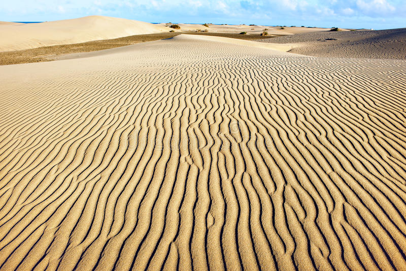 Zandige duinen van Maspalomas Gran Canaria Canarische Eilanden royalty-vrije stock afbeelding