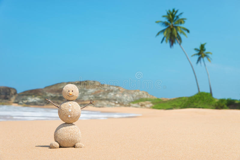 Zandige mens bij oceaanstrand tegen blauwe hemel en palmen royalty-vrije stock foto's