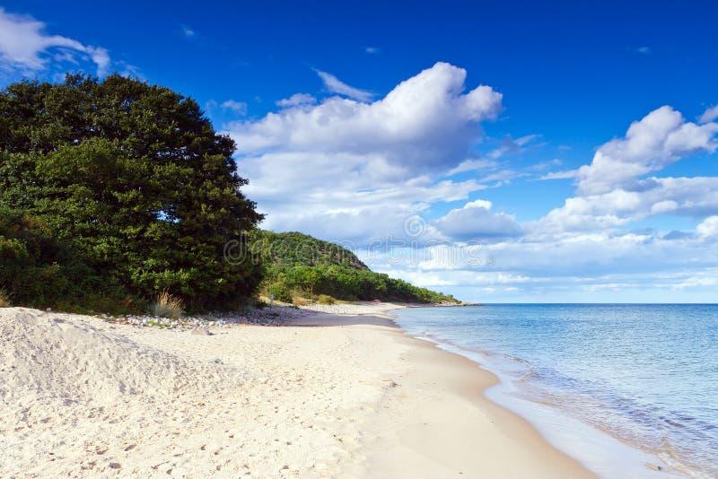 Zandige strand ofr Oostzee in Zweden stock foto's