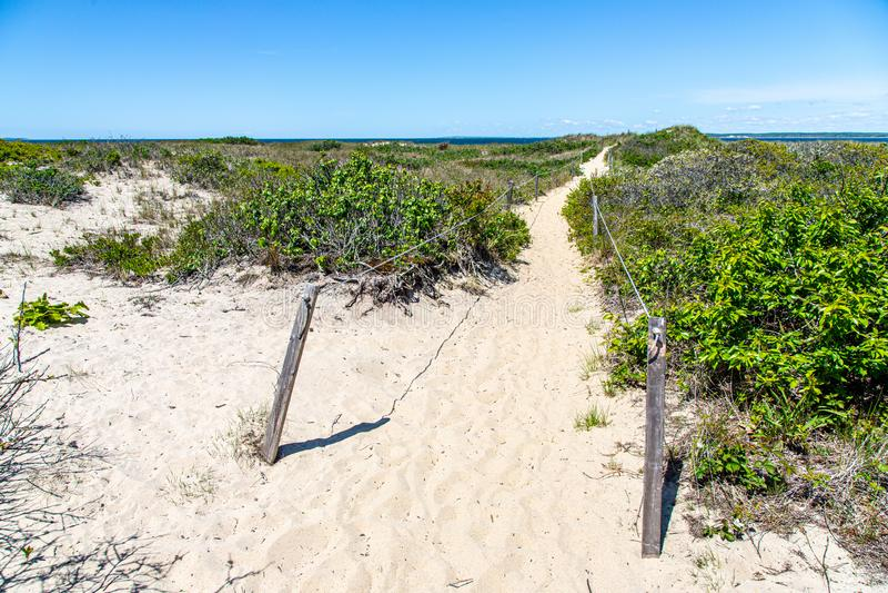 Zandige strandweg aan de oceaan stock fotografie
