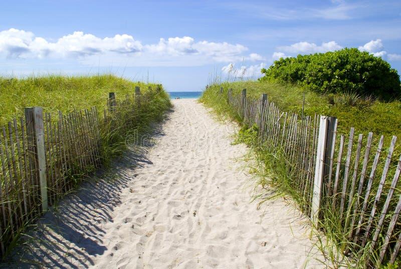 Zandige weg aan strand stock fotografie