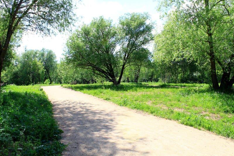 Zandige weg in het stadspark, dat door de ochtendzon wordt verwarmd royalty-vrije stock afbeelding