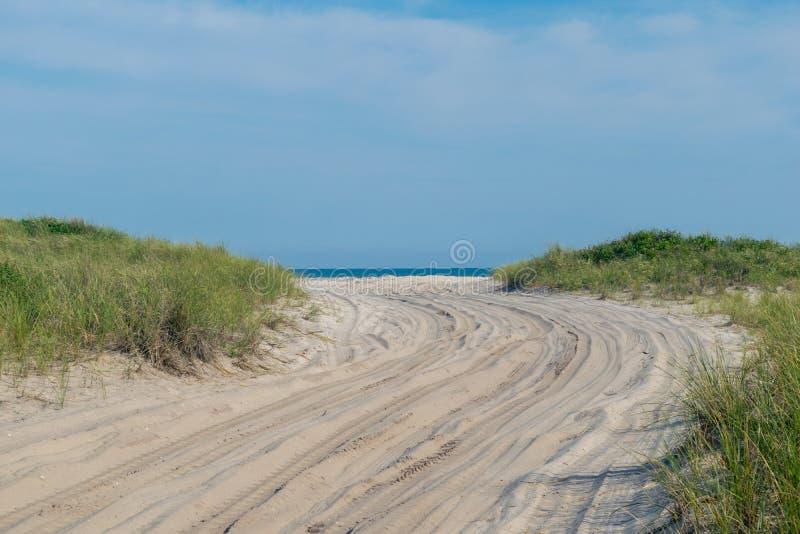 Zandige weg naar het strand, met weelderig groen gras aan beide kanten, Brandeiland, NY royalty-vrije stock fotografie