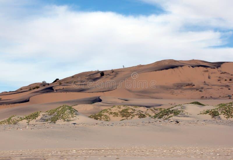 Zandkunst langs het Overzees van Cortez, Gr Golfo DE Santa Clara, Sonora, Mexico royalty-vrije stock afbeelding