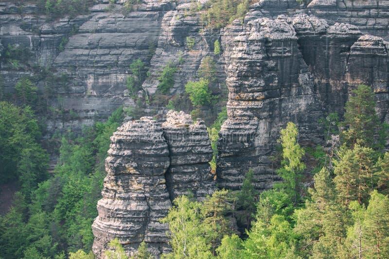 Zandsteenrotsen in nationaal park Boheems Zwitserland in Tsjechische Republiek stock foto