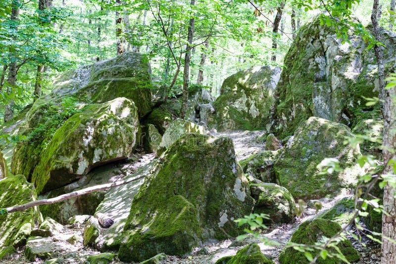 Zandsteenrotsen in steengroeve in Shapsugskaya-streek royalty-vrije stock afbeeldingen
