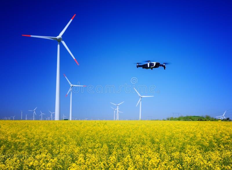 Zangão em um campo com moinhos de vento Campo do Rapeseed na flor Energia renov?vel Proteja o ambiente imagens de stock royalty free