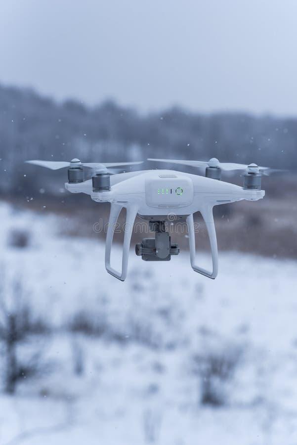 Zangão pairando que toma imagens da natureza selvagem Tempo frio do inverno Dia nebuloso com neve de queda imagem de stock royalty free