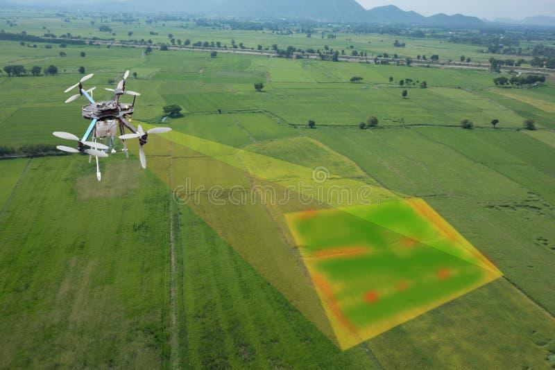 Zangão para a agricultura, uso do zangão para vários campos fotografia de stock