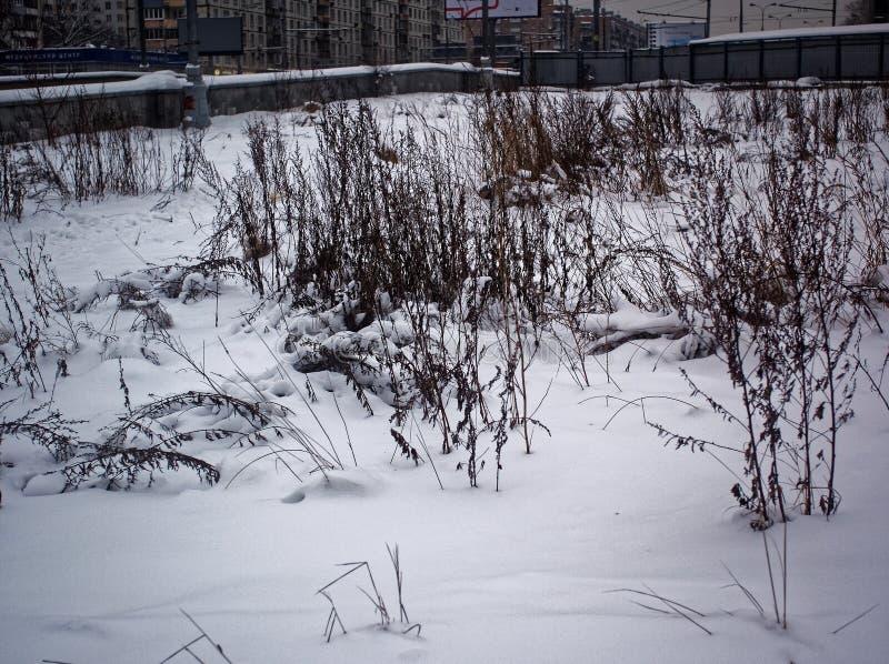 Zaniechana budowa w śniegu w zimie obrazy stock