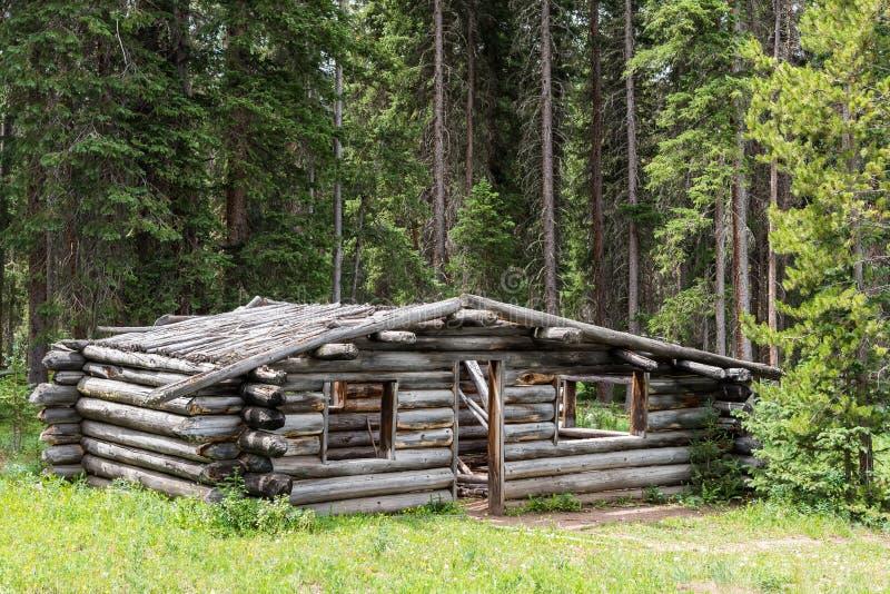 Zaniechana kabina w Północnym Kolorado przy stanu stanu Lasowym parkiem zdjęcia stock