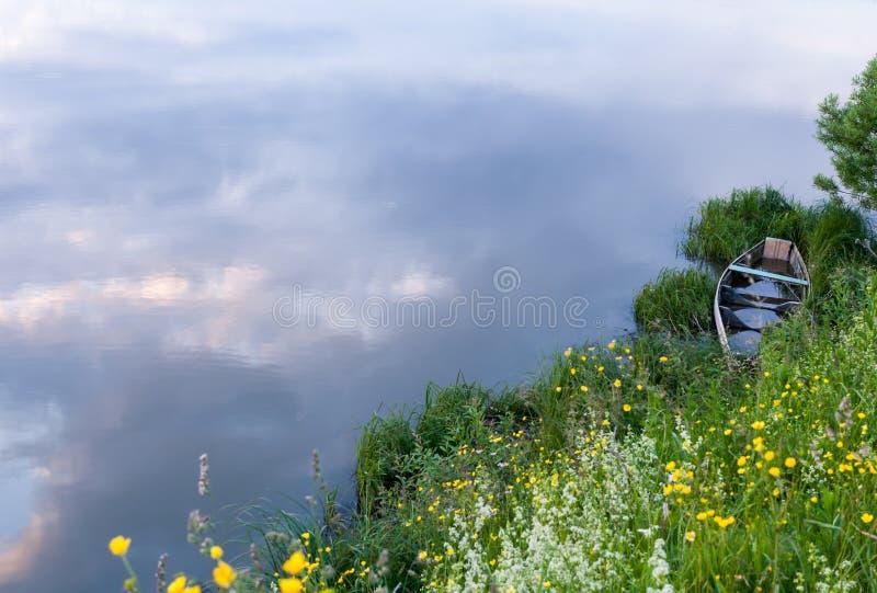 Zaniechana zalewająca łódź w trawie na rzecznym brzeg obraz stock