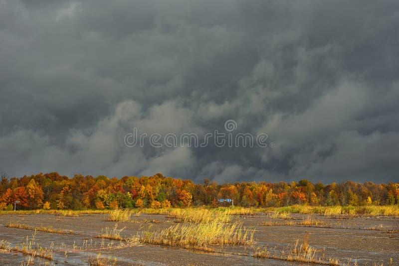Zaniechanego udziału nieba ciemna jesień obrazy stock