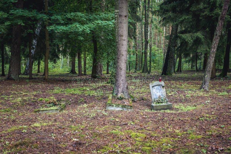 Zaniechany cmentarz w Polska fotografia royalty free