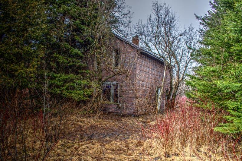 Zaniechany dom w drewnach obrazy royalty free