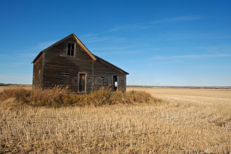 Zaniechany dom w zbierającym pszenicznym polu w spadku obraz royalty free