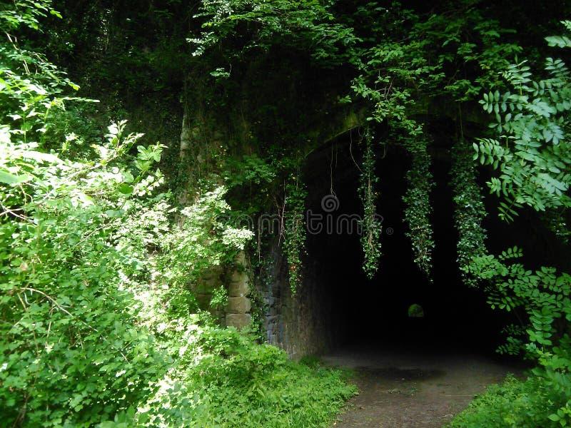 Zaniechany Kolejowy tunel zdjęcia stock