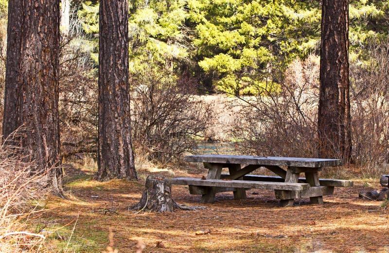 zaniechany lasowy pykniczny stół zdjęcia royalty free