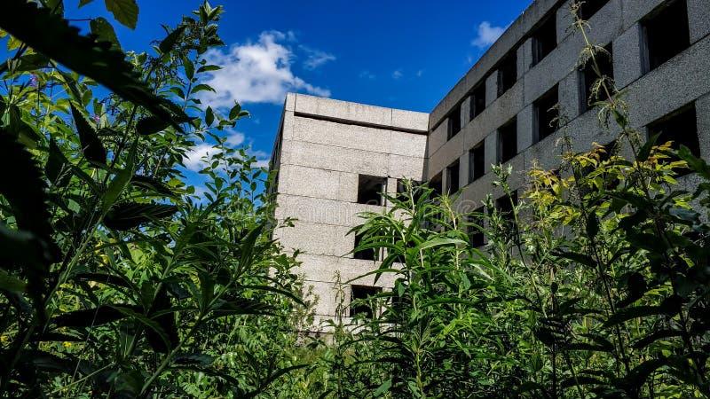 Zaniechany przerastający betonu dom na pogodnym letnim dniu Budować bez szklanych okno zdjęcie stock