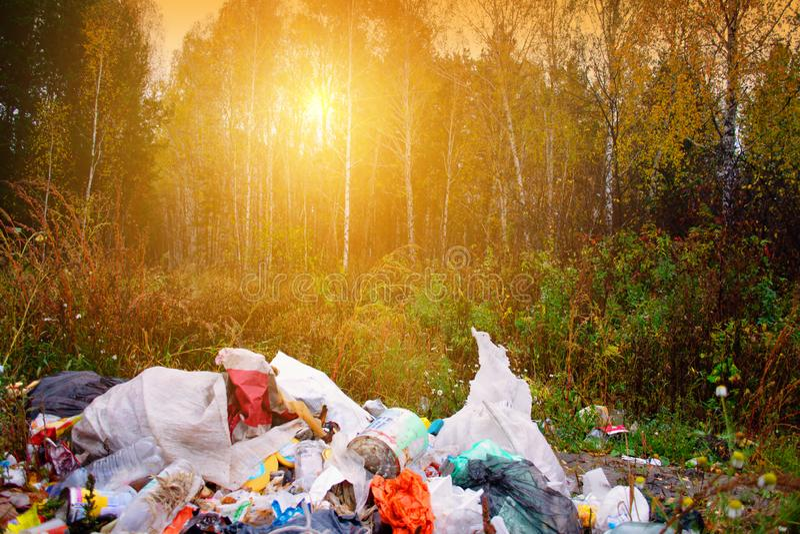 Zanieczyszczenie środowiska i środowiskowy zagrożenie od stosu odrzucający śmieci w pięknym lesie zaświecaliśmy światłem słoneczn fotografia stock