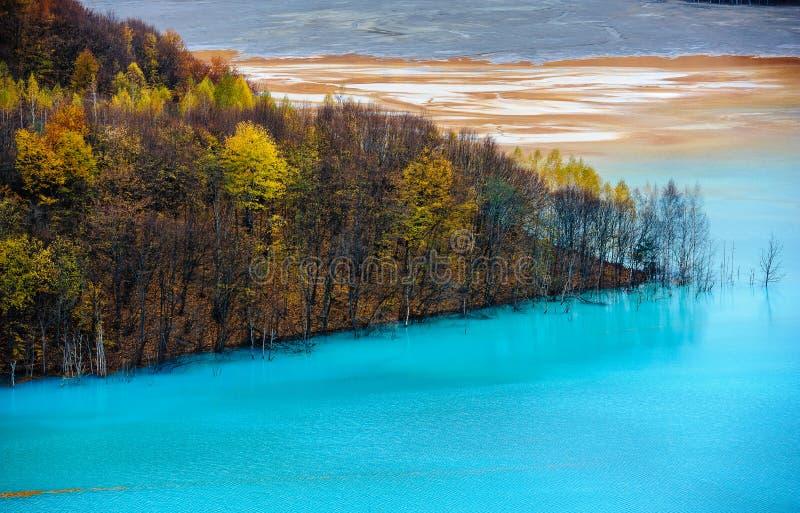 zanieczyszczenie zielona nutowa woda zdjęcia stock