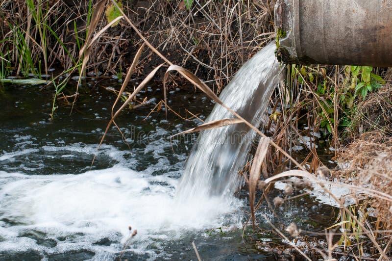 Zanieczyszczona woda zdjęcie royalty free